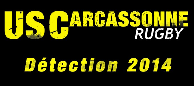 detection usc 2014