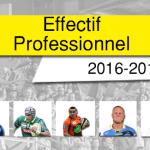 effectif professionnel 16-17