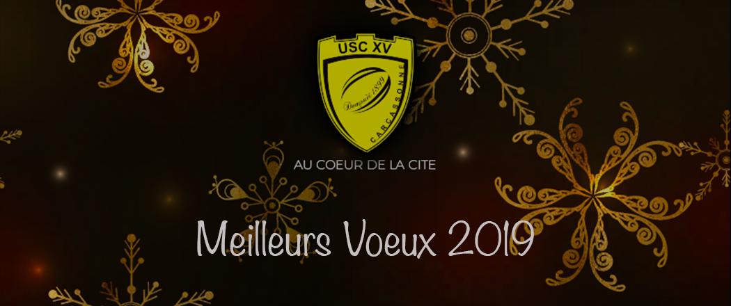 MeilleursVoeux2019